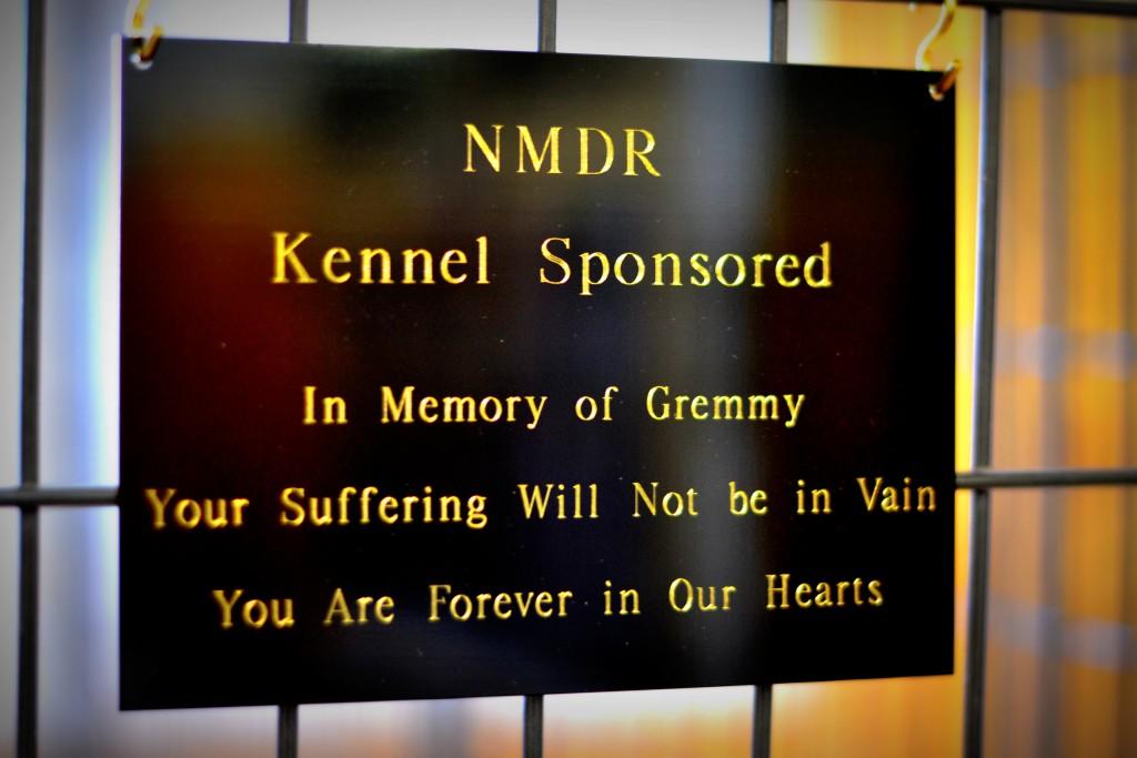 Gremmy kennel dedication (1)